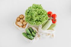 Set vegetable products salad stew soup fresh. Set of vegetable products for salad stew soup fresh isolated mock up royalty free stock photo