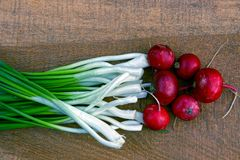 Set vegetable radishes and green onions on a wooden Board brown Stock Photography