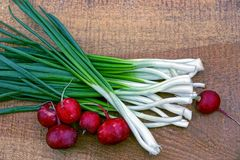 Set vegetable radishes and green onions on a wooden Board brown Stock Image