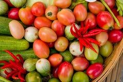 A set of vegetable for Som Tom Stock Images