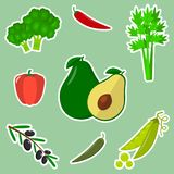 A set of fresh vegetables in a white stroke on a green background. vector illustration
