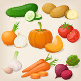 Set of vegetable. Vector illustrations Stock Image