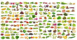 Set of vegetable on white background. Set of vegetable on a white background Royalty Free Stock Images