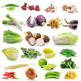 Set of vegetable on white background. Set of fresh  vegetable on white background Stock Photography