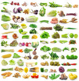Set of vegetable on white background Stock Photos