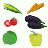 Set of vegetable on white background. Vector illustrations Stock Photography