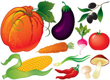 Set of vegetables. At white background Stock Images