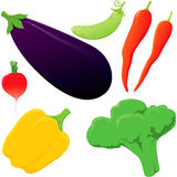 Set of vegetables. Royalty Free Stock Images