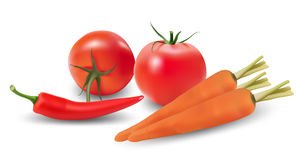 Set of vegetables. Stock Photography