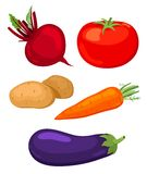 Set of vegetables. Set of five vegetables.Beet, tomato, potato, carrots and eggplant. Isolated on white Stock Photos