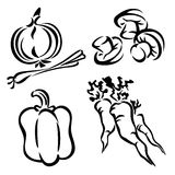 Set vegetables vector illustration