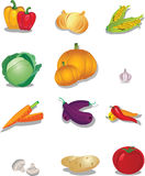 Set of vegetables Royalty Free Stock Images