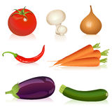 Set of vegetables stock illustration