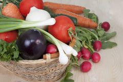 A set of vegetables. In the basket Stock Photography