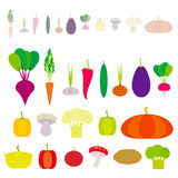 Set of vegetables bell peppers, pumpkin, beets, carrots, eggplant, red hot peppers, cauliflower, broccoli, potatoes, mushrooms, cu Stock Photo