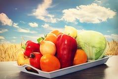 Set of vegetables Stock Images