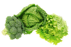 Set of vegetables cabbage, lettuce, broccoli. Stock Photos