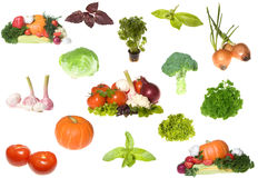 Set of vegetables collection Stock Photos