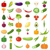 Set of vegetables. Royalty Free Stock Photos