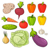 Set of vegetables drawn in cartoon style. Set of color vegetables drawn in cartoon style. Vector illustration Stock Images