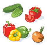 Set of vegetables. Set of fresh vegetables on white background. Vector illustration vector illustration