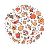 Circle fruit set stock illustration