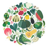 Set of vegetables and herbs forming a round shape Royalty Free Stock Photo