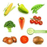Set with vegetables  illustration Stock Photography