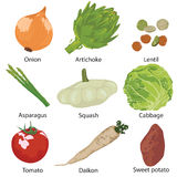 Set vegetables isolated Royalty Free Stock Photography