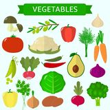 Set of vegetables. Organic vegetarian healthy food isolated on white background. Vector. Stock Image
