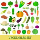 A set of fresh vegetable illustrations on a white background. A set of vegetables. Organic vegetarian healthy food  on a white background. Vector Royalty Free Illustration