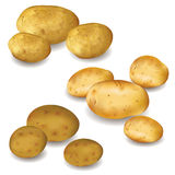 Set of vegetables potatoes on white Royalty Free Stock Photo