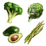 Set Of Vegetables In Realistic Style Royalty Free Stock Photos