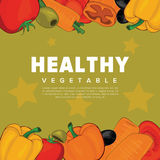 Set of vegetables. With space for text. Vector Illustration Stock Images
