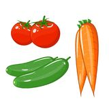 Set of vegetables of tomatoes, carrots and cucumbers Stock Photography