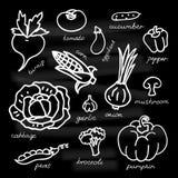 Set of vegetables vector illustration on black background. Royalty Free Stock Images