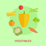 Set of Vegetables Vector Illustration. Royalty Free Stock Images
