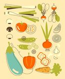 Set of vegetables in vintage style Royalty Free Stock Photos