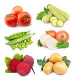Set of vegetables Stock Photos