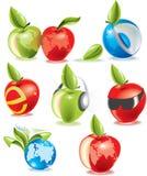 set vektor för äppleekologi Royaltyfria Foton