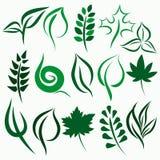 set vektor för leaf
