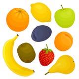 set vektor för ny frukt Designmall av matingredienser Royaltyfri Bild
