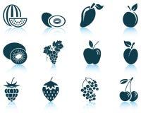 set vektor för fruktsymbolsillustration Royaltyfri Bild