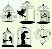 Set Vektorbirdscages Stockfoto