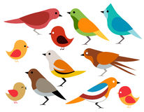 Set verschiedene Vögel Lizenzfreies Stockbild