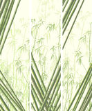 Set of vertical banner with many bamboos. Royalty Free Stock Photography