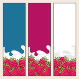 Set of  Vertical  Banners with Berry Raspberries Royalty Free Stock Photos