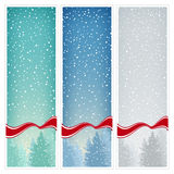 Set of  Vertical Banners with Snowfall Stock Image