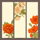 A set of vertical banners with vintage flowers. Stock Photos