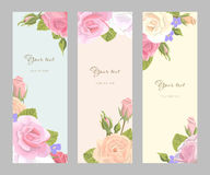 Set vertical floral greeting card. Romantic set vintage vertical banner holiday to wedding, birthday, valentines day, vector illustration, delicate flower wreath Royalty Free Stock Images